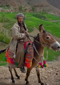Donkey    Jark, Waras  District , Afghanistan