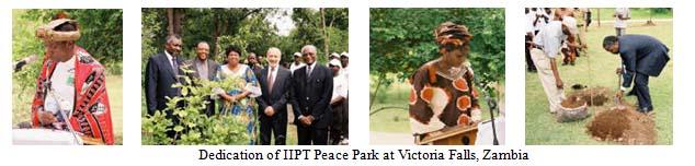 IIPT_Zambia_tree planting