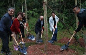 China Tree Planting